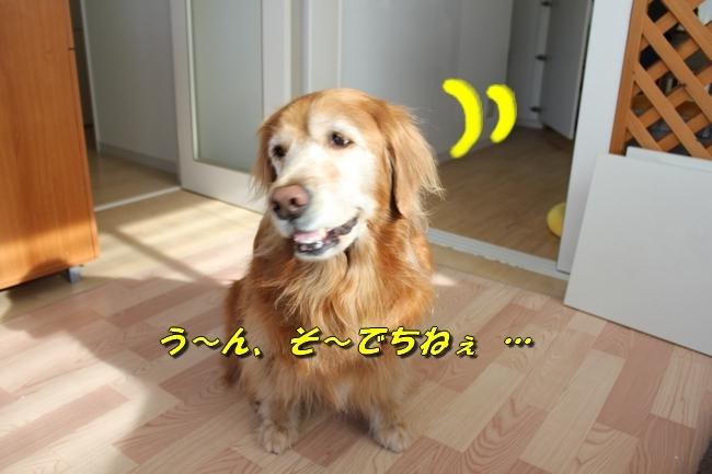 カトちゃんエアコン 018