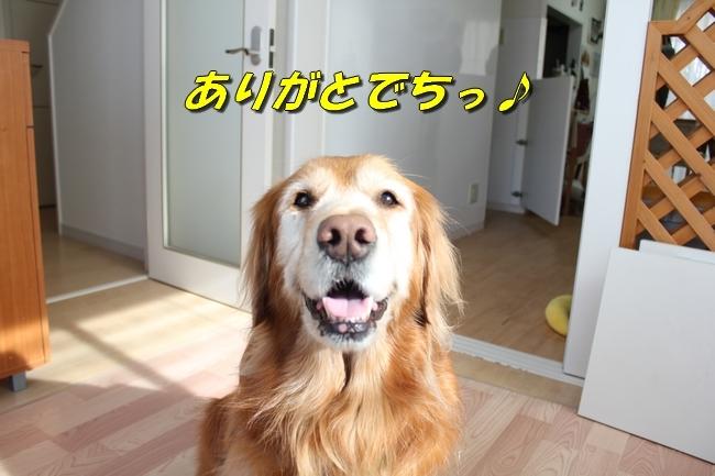 カトちゃんエアコン 024