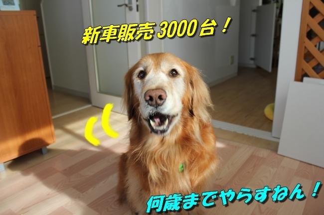 カトちゃんエアコン 028
