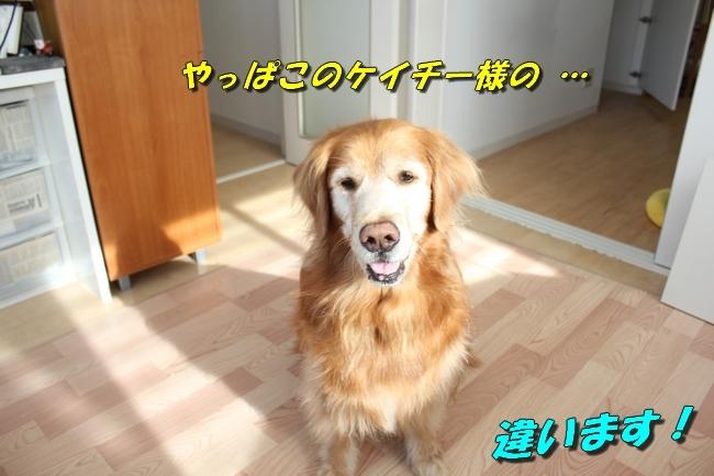 カトちゃんエアコン 037