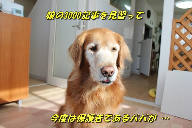 カトちゃんエアコン 046