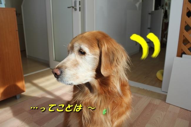 カトちゃんエアコン 031
