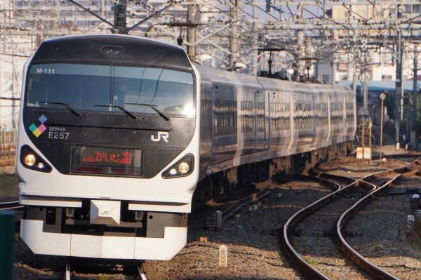 2017-11-05 中央本線E257系モトM-111編成 かいじ号甲府行き