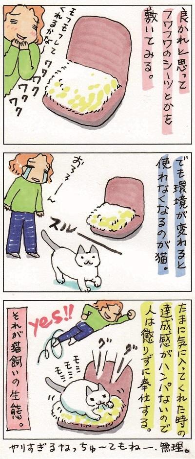 猫飼いの生態 2-2