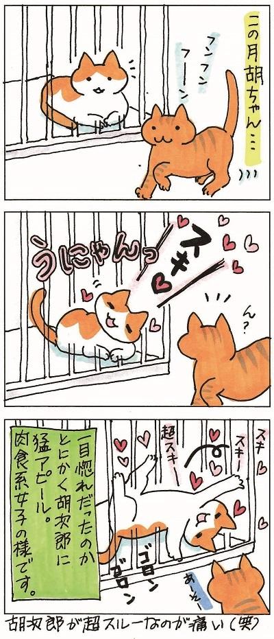 子猫まつりは続く 再 2-2