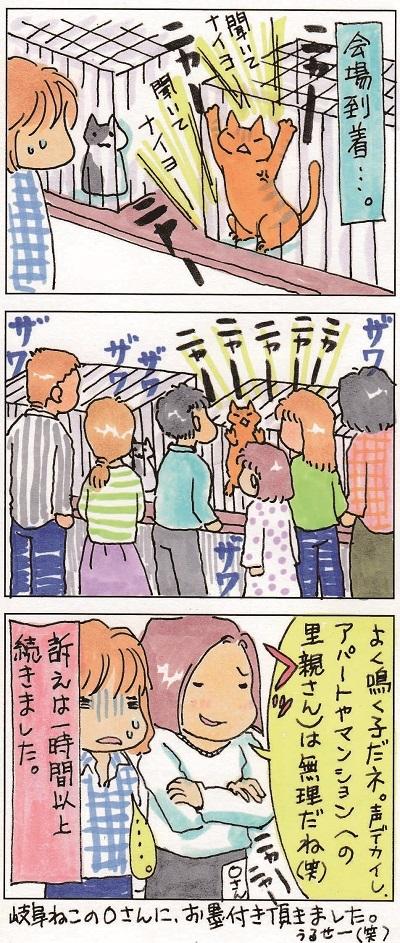 胡次郎くん、茶碗まつりに現る 2-2