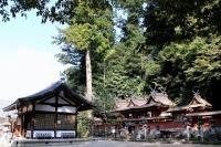 菟田野水分神社