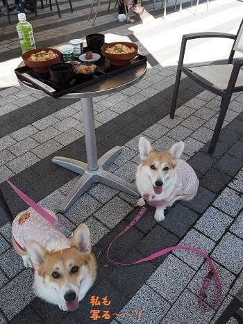 親子丼と姉妹