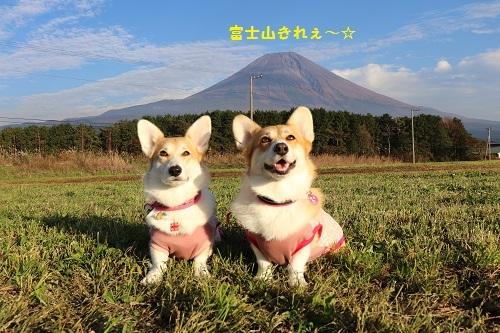 富士山きれぇ