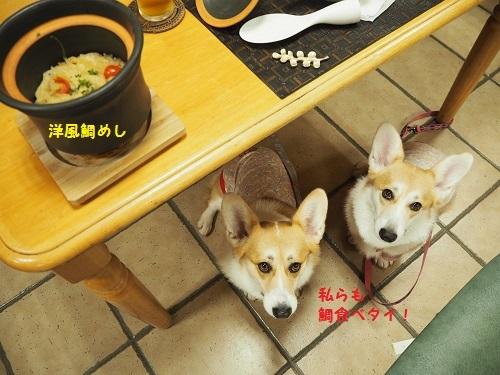 タイ飯と姉妹