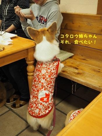それ食べたい