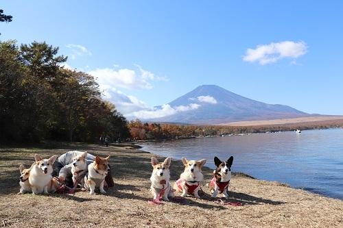富士山バックに集合写真、山中湖
