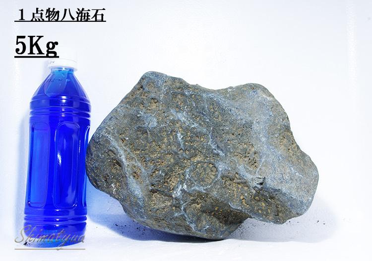 八海石5㎏4番 (2)