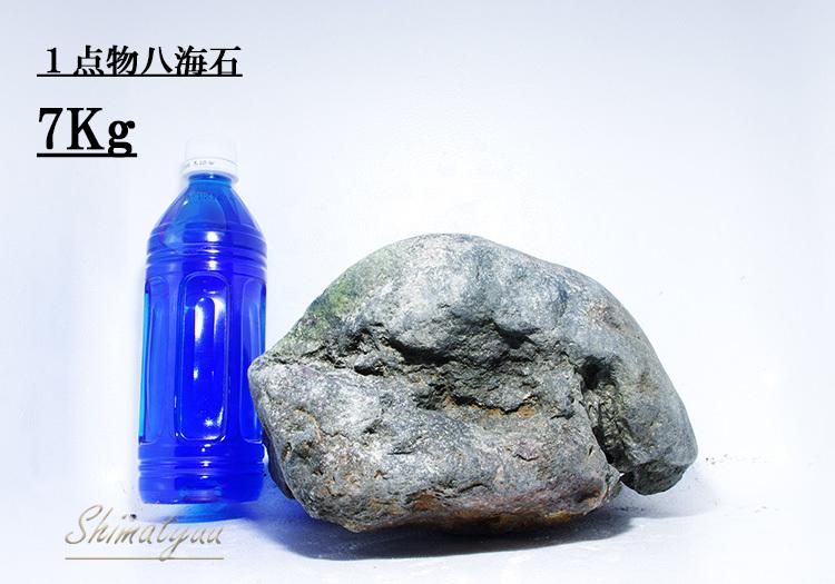 八海石7kg7番(6)