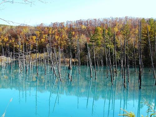 s-青い池10月16日