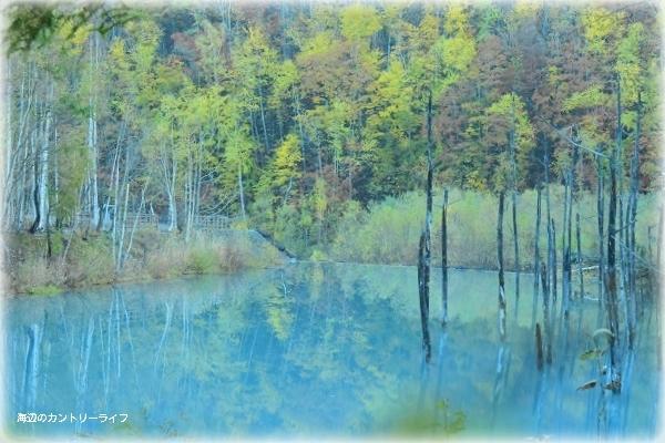 カメラと巡る北海道~魅惑の池