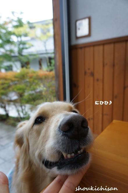 efDSC06360.jpg