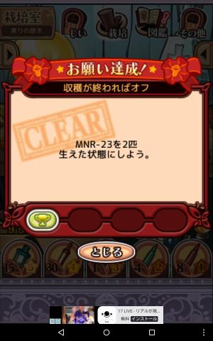 2017実りの原木017