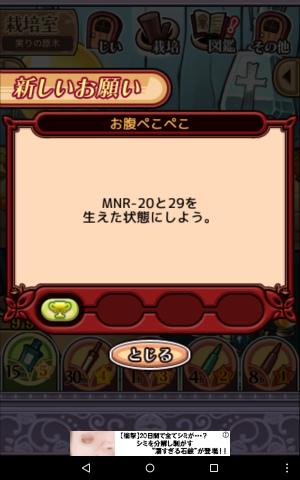 2017実りの原木065