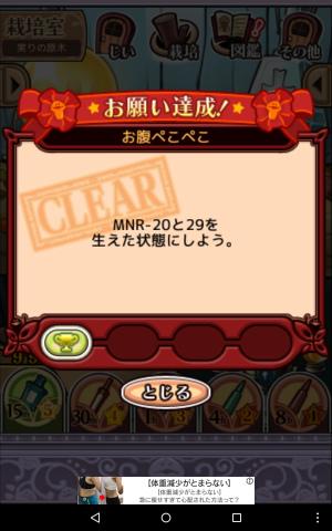 2017実りの原木066
