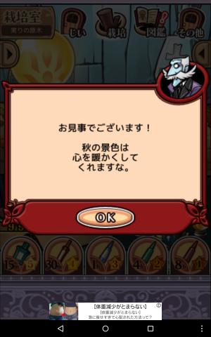 2017実りの原木069