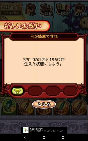 2017宇宙の原木008