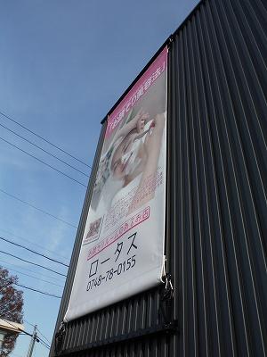 壁面田ペストりー2