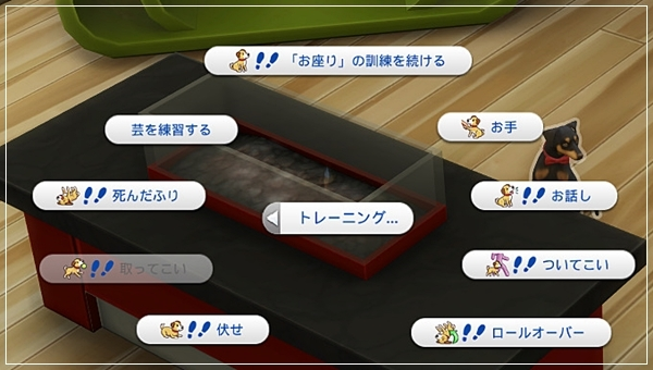 CandD-Hjikata1-11-1.jpg