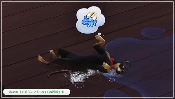 CandD-Hjikata1-22.jpg
