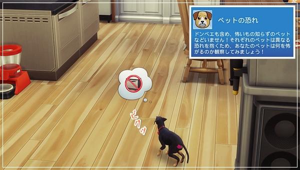 CandD-Hjikata1-23.jpg
