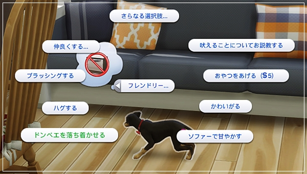 CandD-Hjikata1-27.jpg