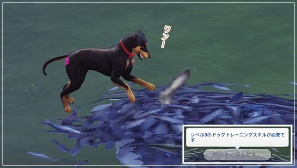CandD-Hjikata1-39.jpg