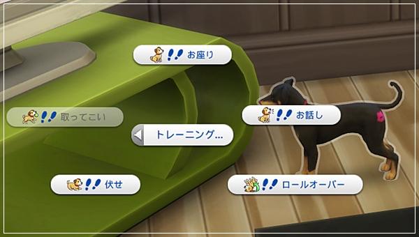 CandD-Hjikata1-4.jpg