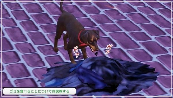 CandD-Hjikata1-45.jpg