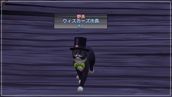 CandD-Hjikata1-46.jpg