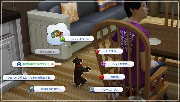 CandD-Hjikata2-19.jpg