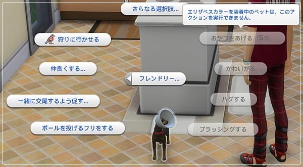 CandD-Hjikata2-45-2.jpg