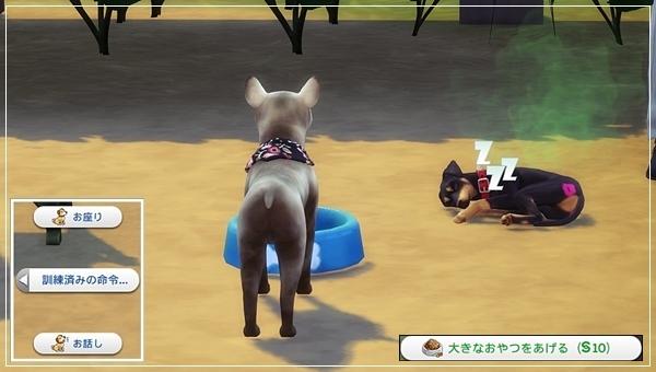 CandD-Hjikata3-28.jpg