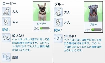 CandD-Hjikata3-31-1.jpg