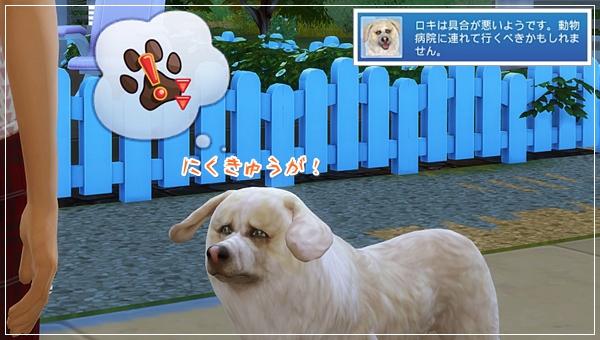 CandD-Hjikata3-8.jpg