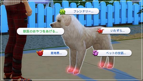 CandD-Hjikata3-9.jpg