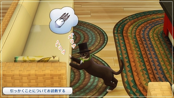 CandD-Hjikata4-13.jpg