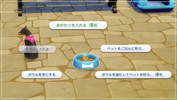 CandD-Hjikata5-13-1.jpg