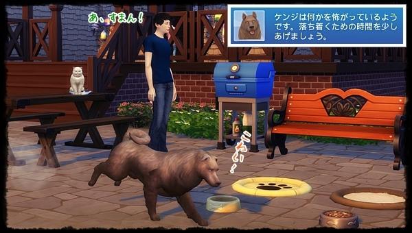 CandD-Hjikata5-16.jpg