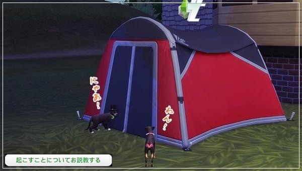 CandD-Hjikata5-17.jpg