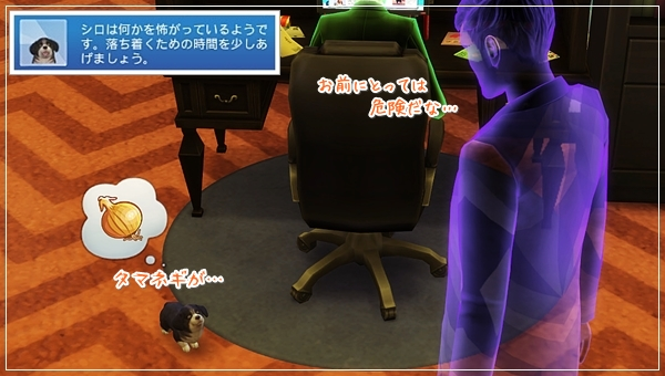 CandD-Hjikata5-44.jpg