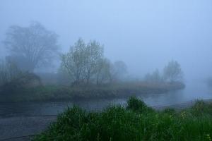 霧の中の瀬野川