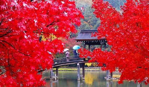 紅葉の無際橋