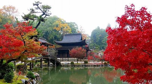永保寺観音堂の紅葉