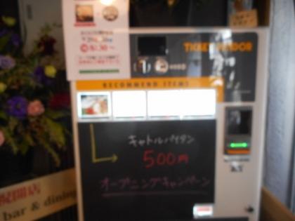 03-DSCN8159-001.jpg